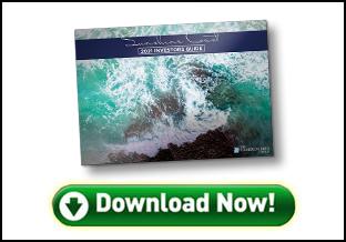 Sunshine Coast Investors Guide Cover - Download Button